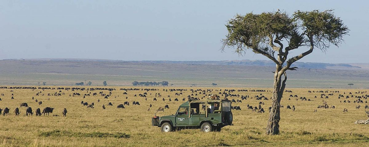 Top Travel Destinations In Kenya